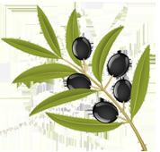 Les olives de Provence