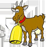 Les chèvres de la ferme de la colline Le Barroux 84