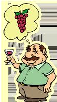 Dégustation des vins du Luberon au gite le Réal Frais de Ménerbes