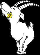 La ferme d'Alain Mathieu un paradis pour les chèvres